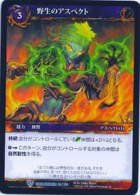 warcraft tcg worldbreaker foreign aspect of the wild japanese