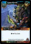 warcraft tcg foil hero cards caleb pavish