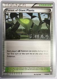 pokemon world championship cards forest of giant plants 74 98 wc