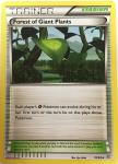 pokemon xy ancient origins forest of giant plants 74 98