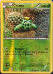 pokemon xy break through cacnea 4 162